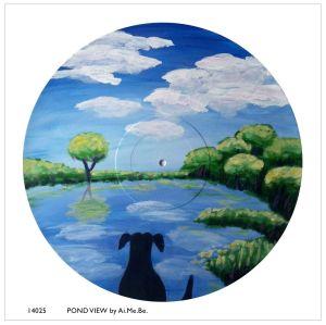 14025_Pond View
